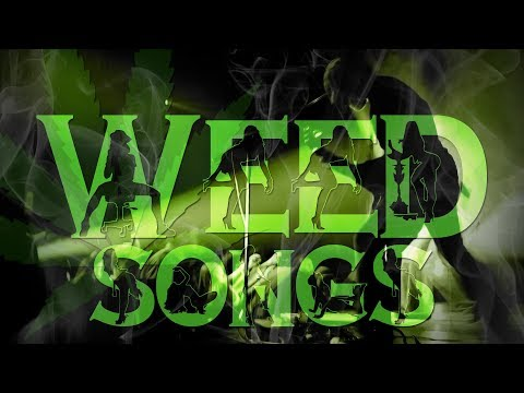 Weed Songs: Ocean Alley - Muddy Water