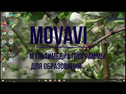 Работа с хромакеем в Movavi Video Suite