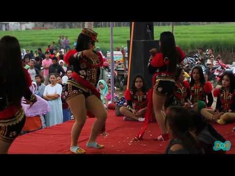 Turi turi putih-(LIVE) Binangun, jenggawur, Banjarnegara-Ndolalak putri dewi arum