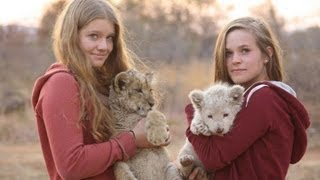 Baby Lions and Leaving Africa
