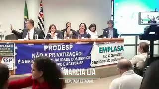 AUDIENCIA PÚBLICA PL 01 19 - ASSEMBLEIA LEGISLATIVA