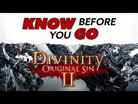 Know Before You Go... Divinity: Original Sin II