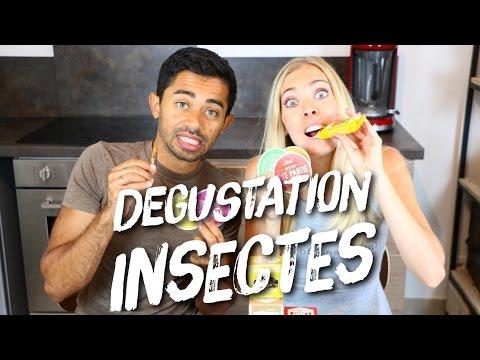 degustation-insectes-et-recette-mug-cake-chocolat-et-vers-miam-!!