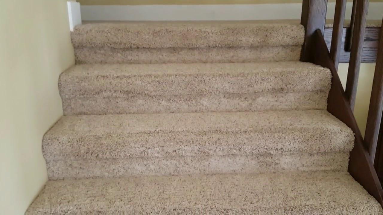 Carpet Cleaner Near Me Youtube