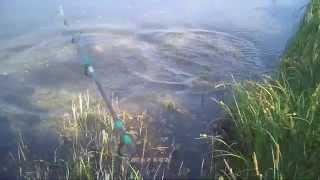 Короткое видео о  ловли щуки с берега на блесну атом rybachil.ru летом.