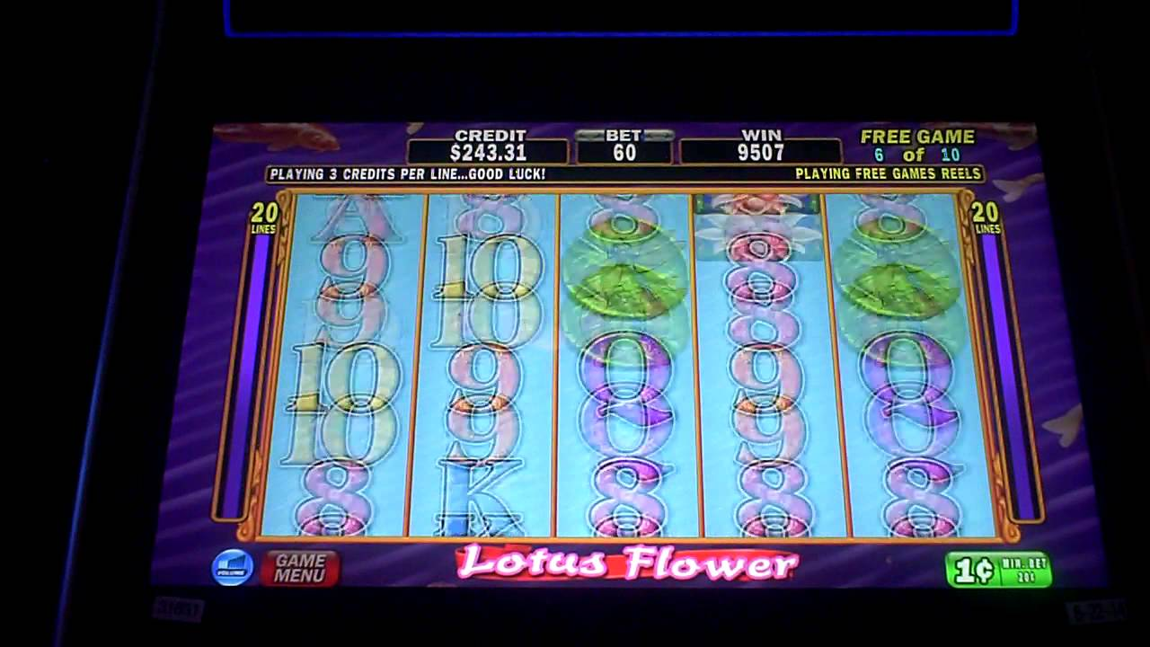 Lotus flower slot machine bonus youtube lotus flower slot machine bonus izmirmasajfo