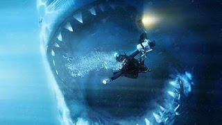 Мегалодон рядом(Самым крупным плотоядным морским животным из всех, когда-либо существовавших, был доисторический монстр..., 2013-10-26T09:34:04.000Z)