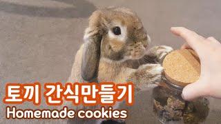 쉽고 간단한 토끼 간식 쿠키를 만들어보자 홈메이드 반려…