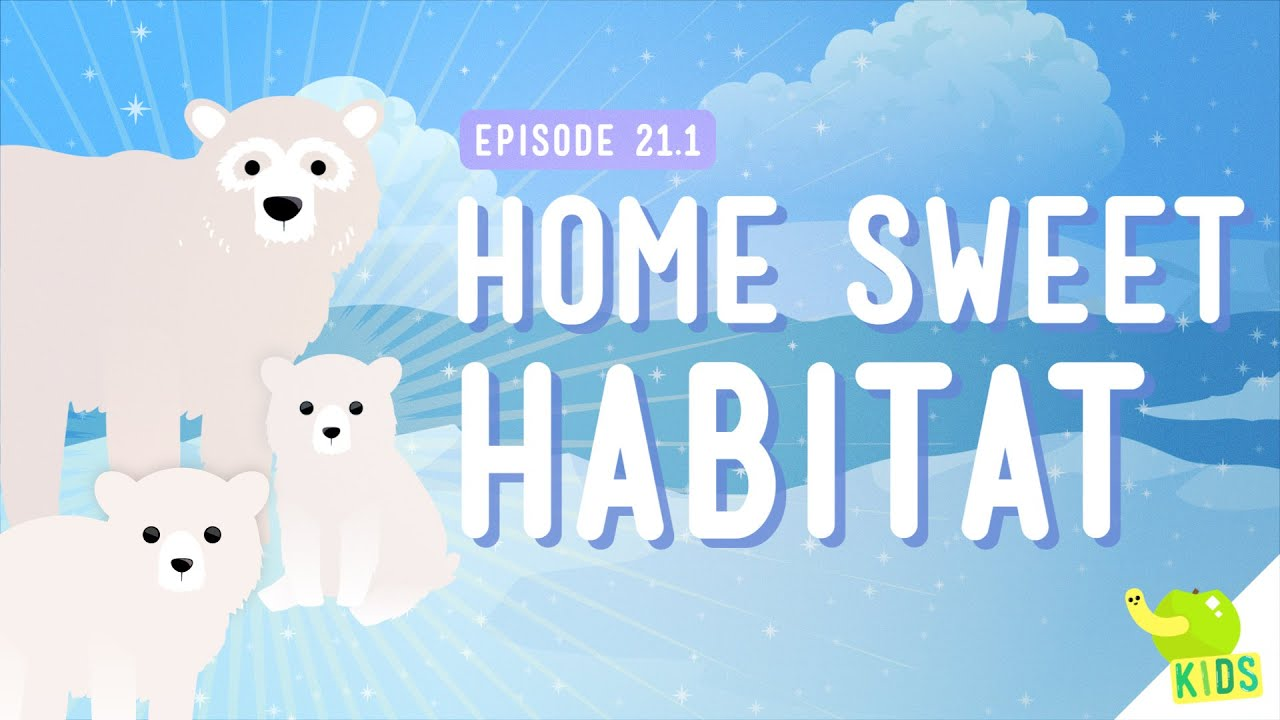 Home Sweet Habitat: Crash Course Kids #21.1 - YouTube [ 720 x 1280 Pixel ]