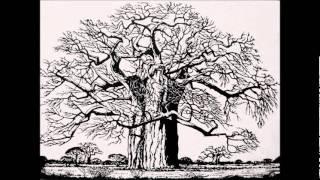 Nico van Rensburg - Onder die Kremetartboom (Under the Boabab)