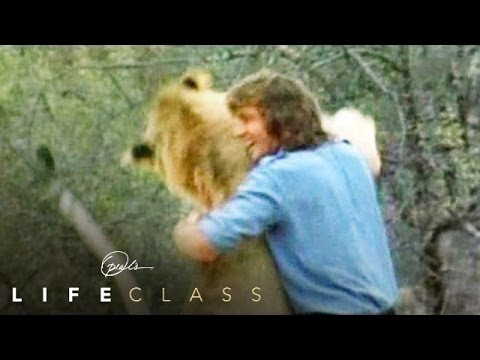 What We Can All Learn from Christian the Lion | Oprah's Lifeclass | Oprah Winfrey Network