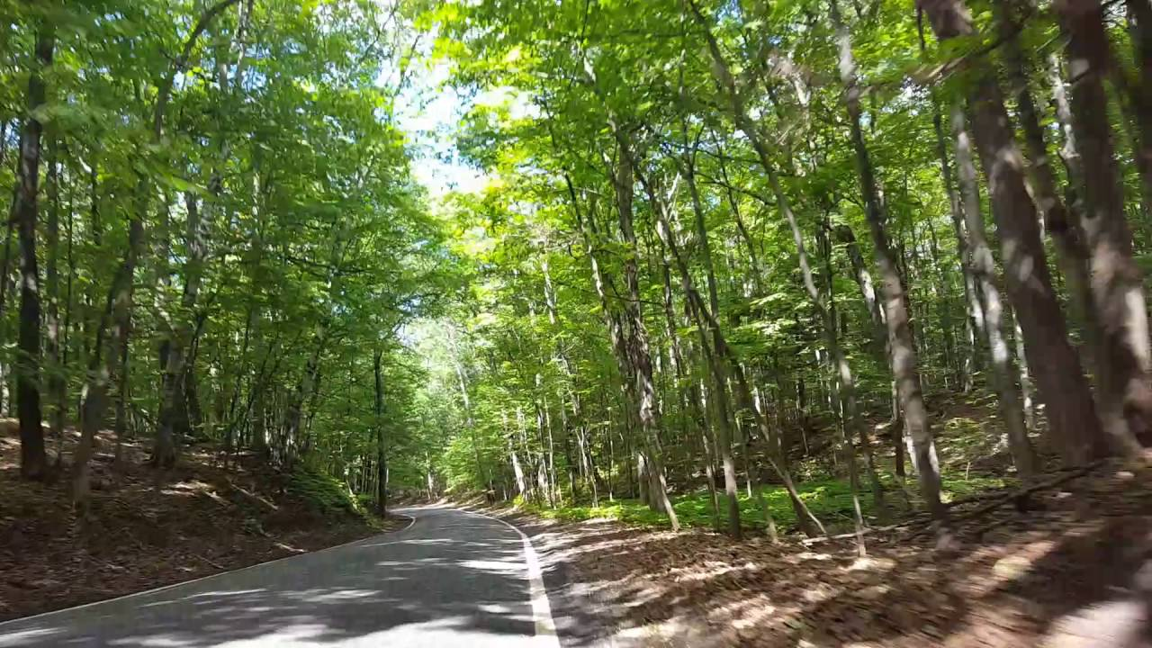 The tunnel of trees m119 in Michigan - YouTube
