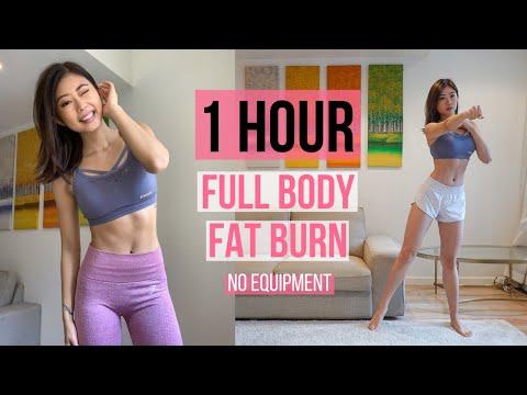 1 HOUR FULL BODY FAT BURN HOME WORKOUT (Warm Up, Arm & Back, Cardio, Ab, Leg & Thigh, Stretch) ~ Emi