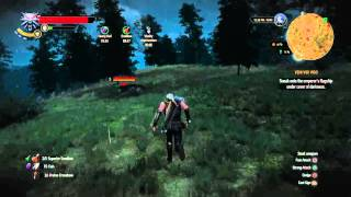 The Witcher 3: Wild Hunt: Feline Cat Steel Sword ENHANCED DIAGRAM (Location)
