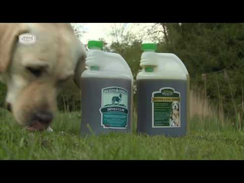 The Animal Health Company-Supplements