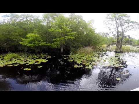 Fishing Lake Marion SC