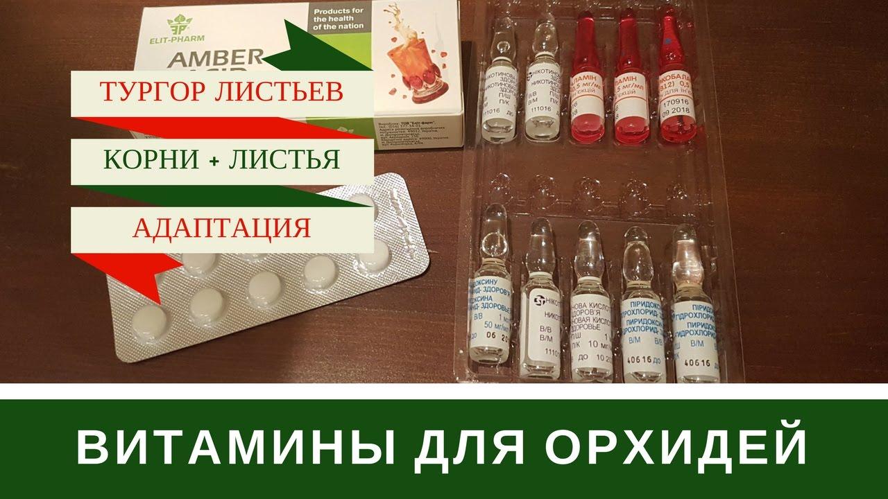 Витамин Е - Источник Красоты И Вечной Молодости ❤ [Купить .