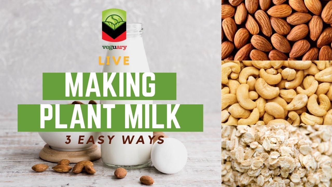 Three Easy Ways to Make Plant Milk at Home: Almond Milk, Cashew Milk, and Oat Milk