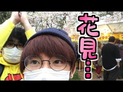【名古屋】桜の時期を見誤るとこうなりますw【赤髪のとも】