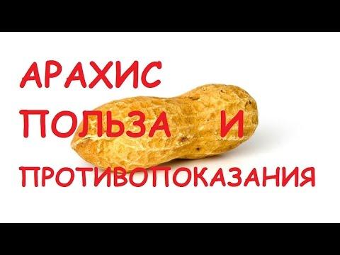 Арахис - Полезные и опасные свойства арахиса
