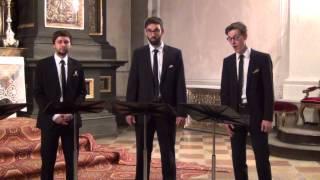 Abendlied (J.G. Rheinberger) - StimmGold Vokalensemble