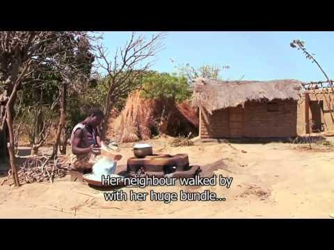Trees & Stoves Senegal Dub