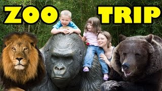 Zoo Animals - Cute Animals - Funny Animals - An Amazing Zoo Trip thumbnail