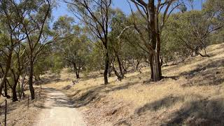 Deep Healing Music: Release Toxic Energy On An Australian Walking Path
