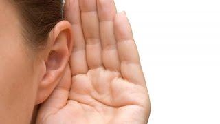 фонит микрофон, плохое качество звука, делаем звук хорошем качестве