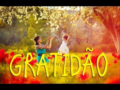 Gratidão - Considerações E Oração
