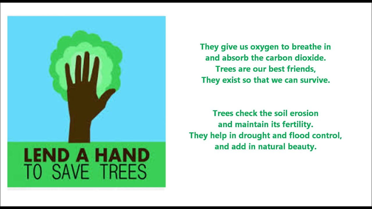 Essay in english save trees