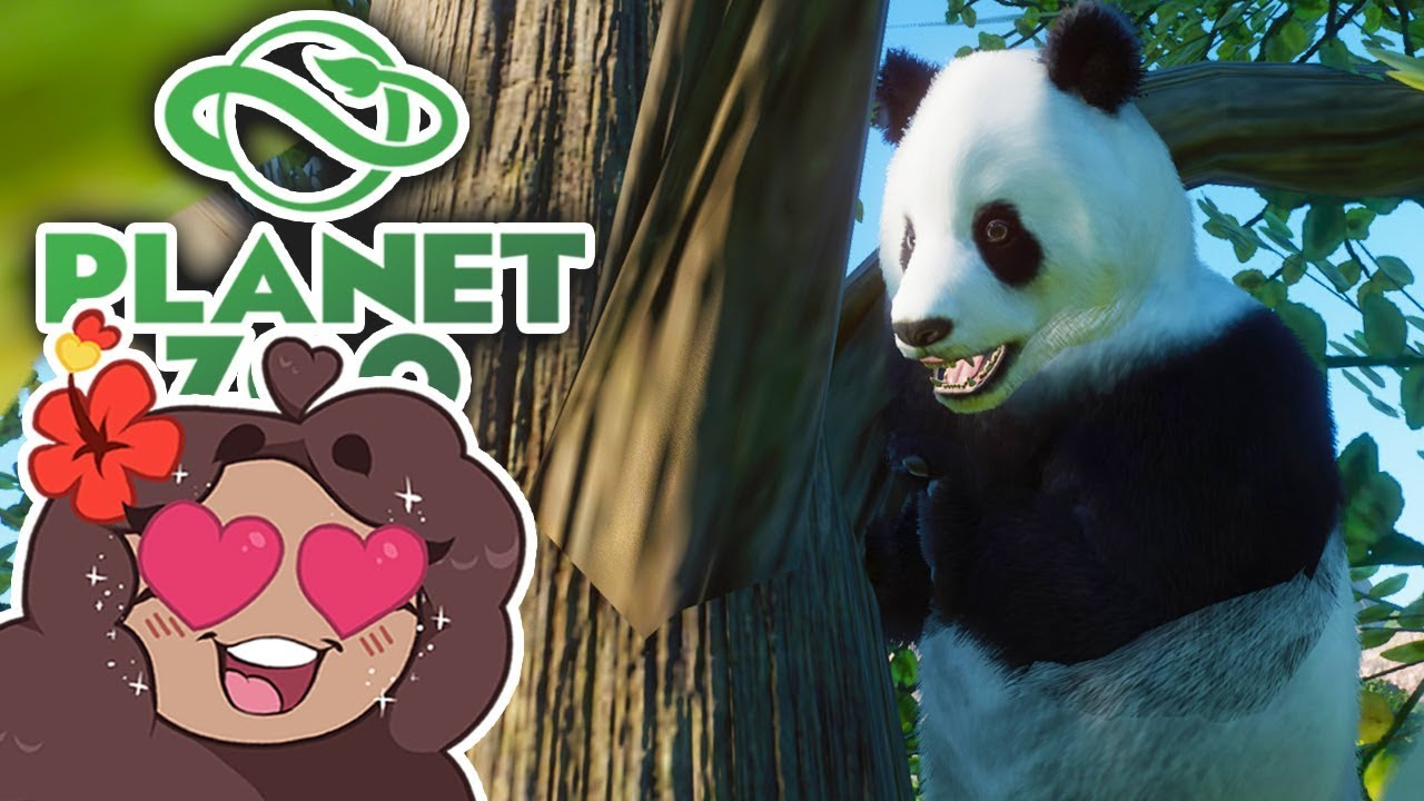 Download Bamboo Pathway to Panda Paradise!! 🐼 Daily Planet Zoo! • Day 5