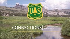 We are the Forest Service