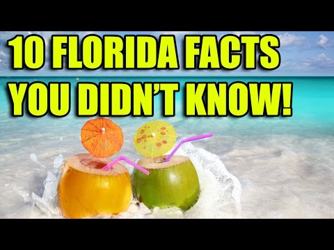 10 Things You Didn't Know About Florida - RANDOMFIDE