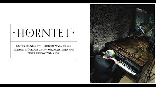 WE ARE: Horntet