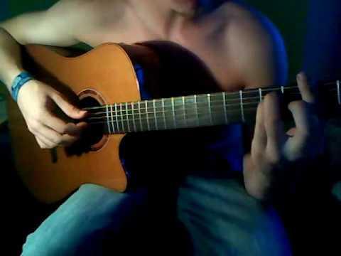 Wizo - Die letzte Sau ( guitar cover)
