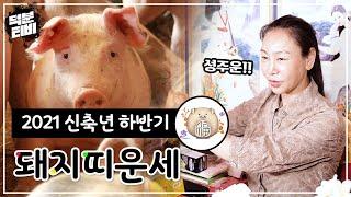 2021년 신축년 하반기 띠별 운세: 돼지띠 '9, 10월 시험운!' 합격운을 대~폭 올려주는 시험 합격 비…