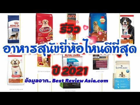 รีวิวอาหารสุนัขพันธุ์ใหญ่ ยี่ห้อไหนดีที่สุด ปี 2021  (บางแก้วเจ้ามีเงิน ep.235)