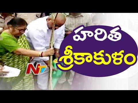 Minister Atchannaidu Plants Sapling at Van Mahotsav in Srikakulam | NTV