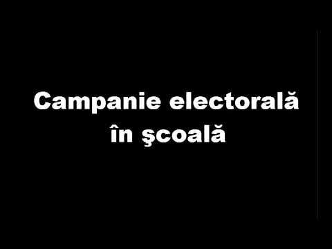 Campanie electorală în scoala - Profesoara Adriana Barnoschi