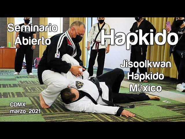 Seminario Abierto de Hapkido en CDMX