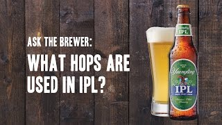 Ask the Brewer: What hops are used in IPL?