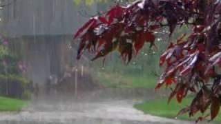Baran Shajarian .... ببار بارون، شجریان