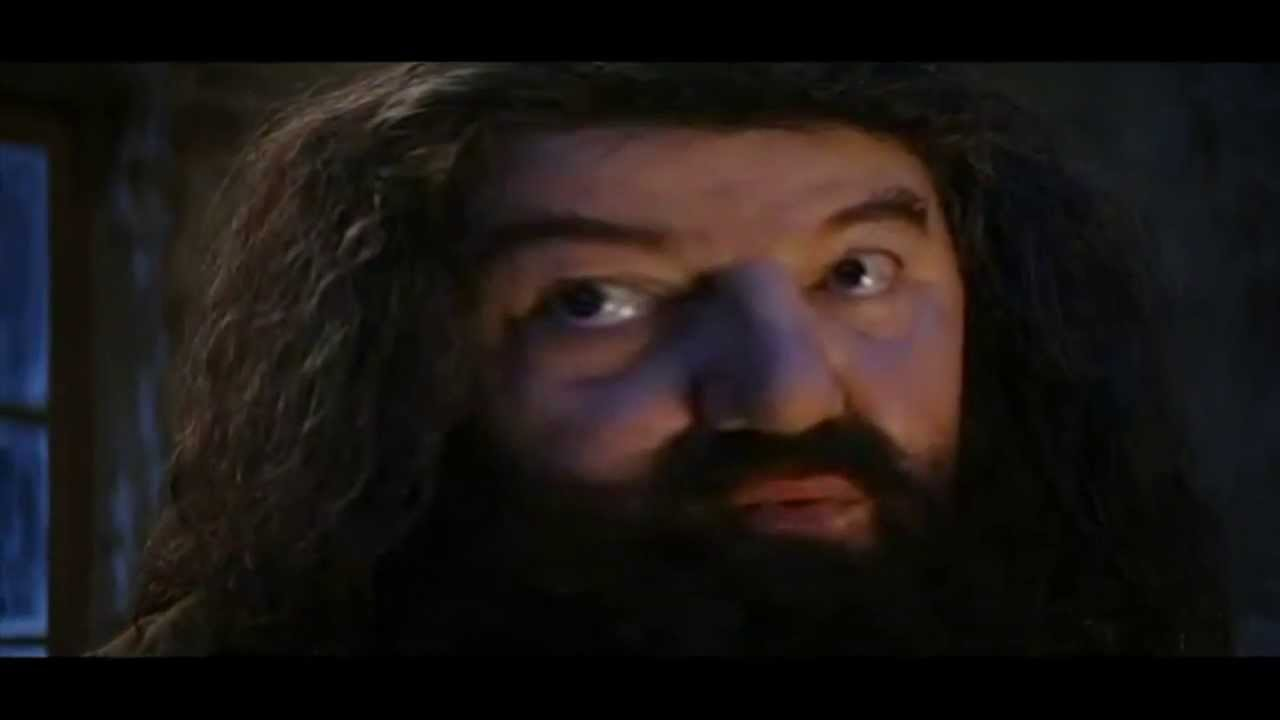 you re a wizard harry dubstep remix youtube