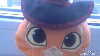 Кот в сапогах и его друзья премьера