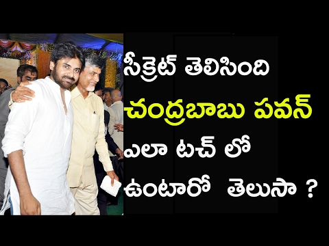 How pavan kalyan and ap cm chandrababu naidu regularly keep in touch with each other