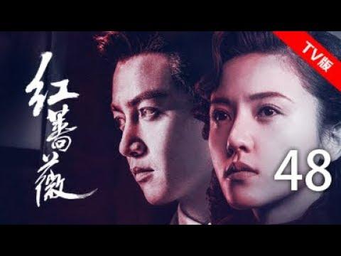 红蔷薇 48丨Wild Rose 48(主演:杨子姗,陈晓,毛林林,谭凯)【TV版】