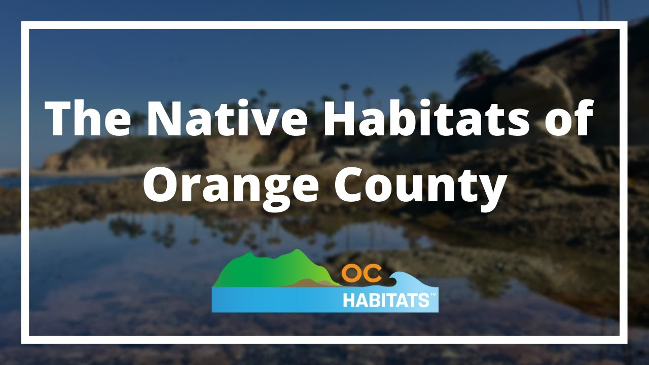 Introducing our Habitat Video Series!