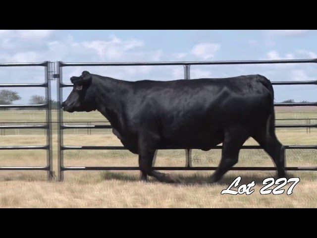 Pollard Farms Lot 227
