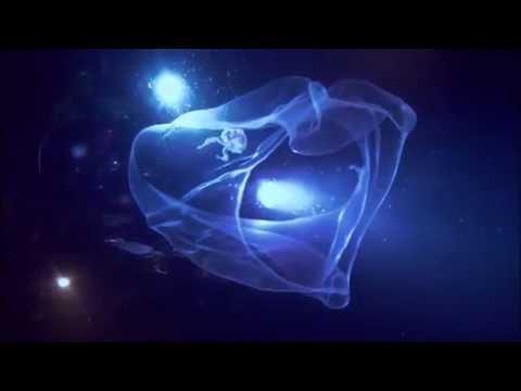 James Cameron's Deepsea Challenge 3D at the CINÉ+ (30 sec.)